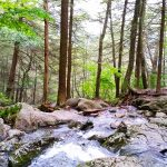 2015-10-01 Race Brook Falls Revisit 21 for CPD