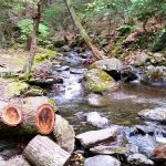 2015-10-01 Race Brook Falls Revisit 25 for CPD