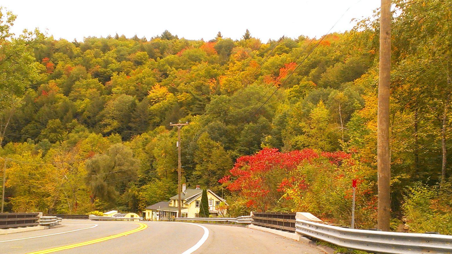 2015-10-02 Berkshire Leaf Color 4 for CPD