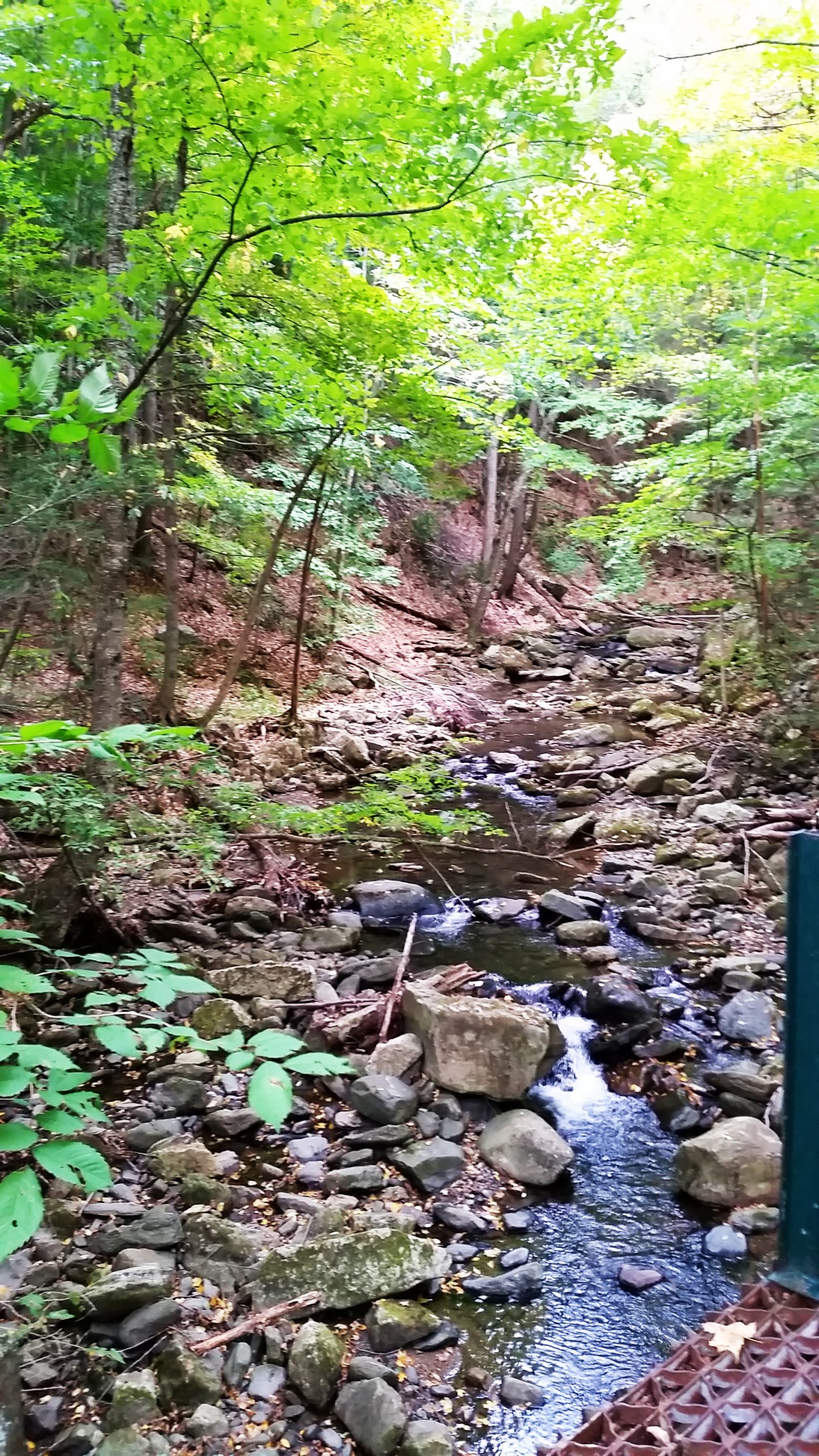 2015-10-02 Sanderson Brook Falls Mass 15 for CPD