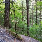 2015-10-02 Sanderson Brook Falls Mass 19 for CPD