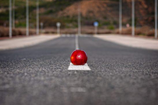 apple-3341245