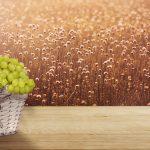 background-image-3256918
