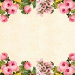 flower-3316681