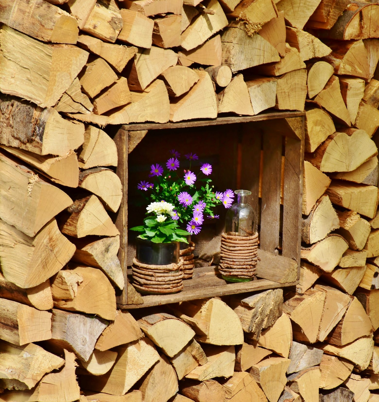 wood-3314602