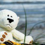 bear-1060695