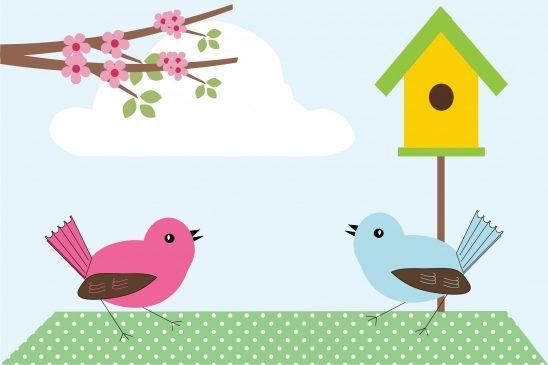 bird-316798