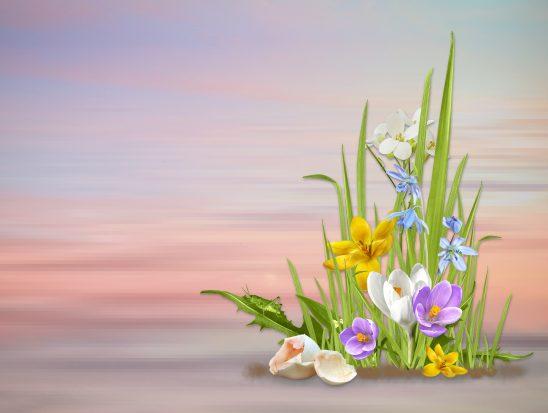 spring-3234186
