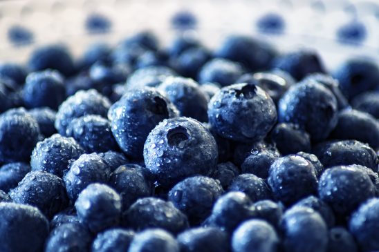 blueberry-3460423