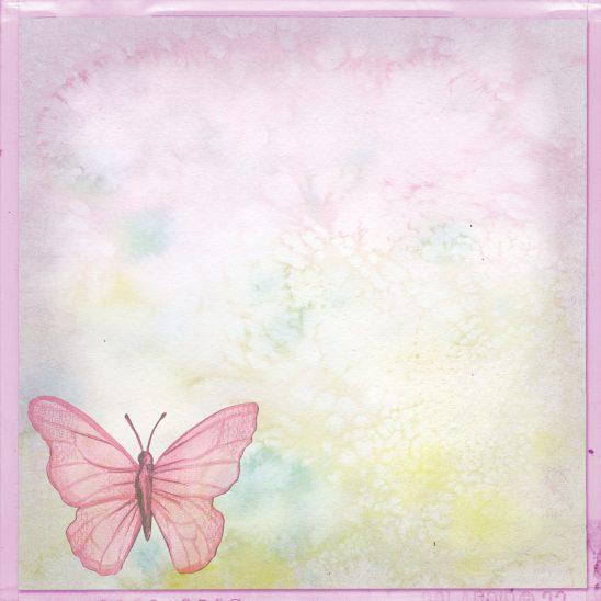 butterfly-1181646