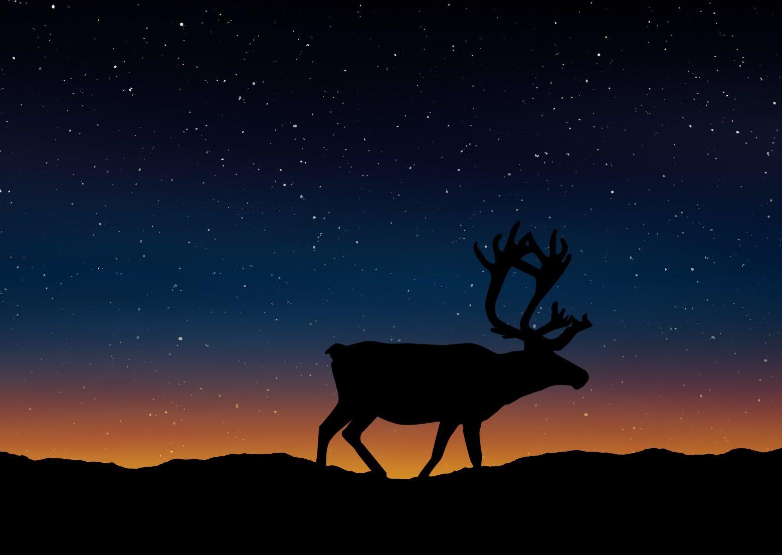 deer-1745321