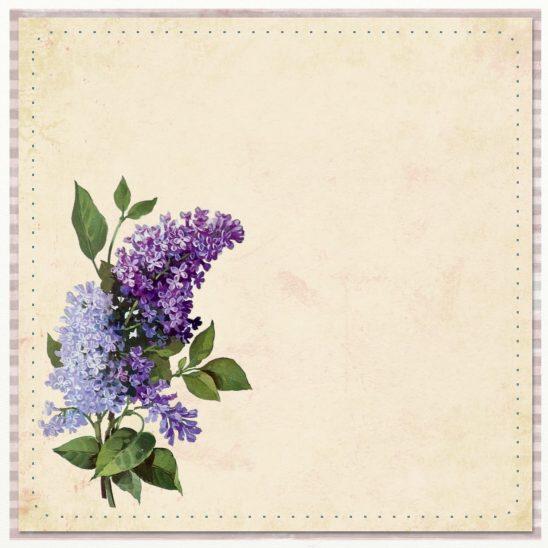 flower-1118824