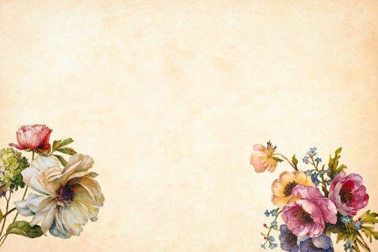flower-3316680