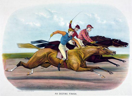 horse-316929