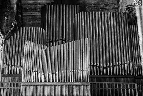 organ-1736022