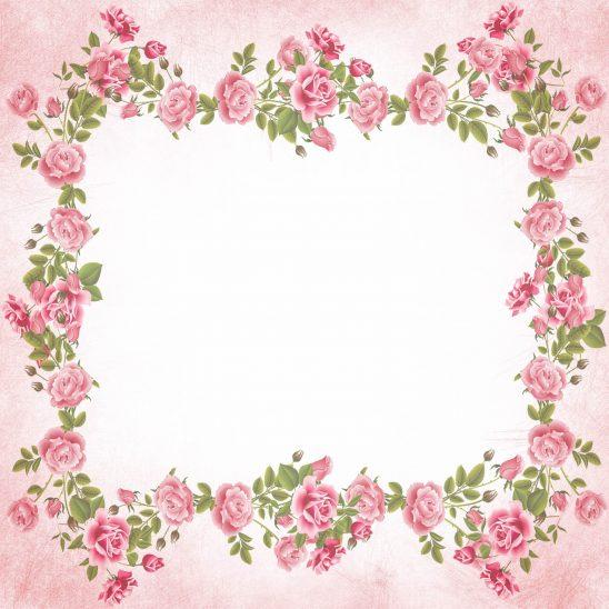 roses-2226068