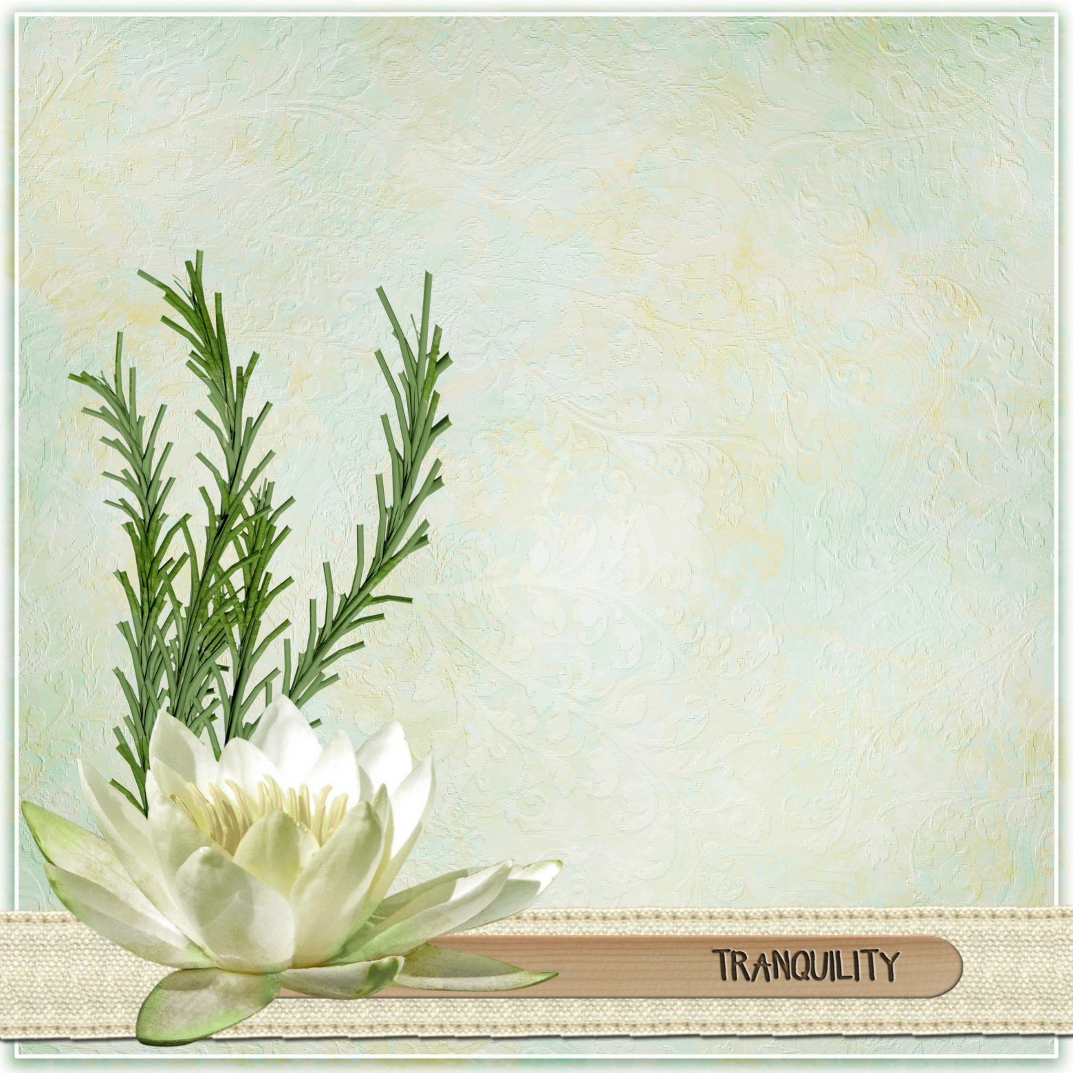 tranquility-1301899