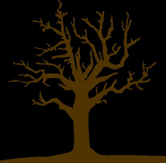 tree-3320941