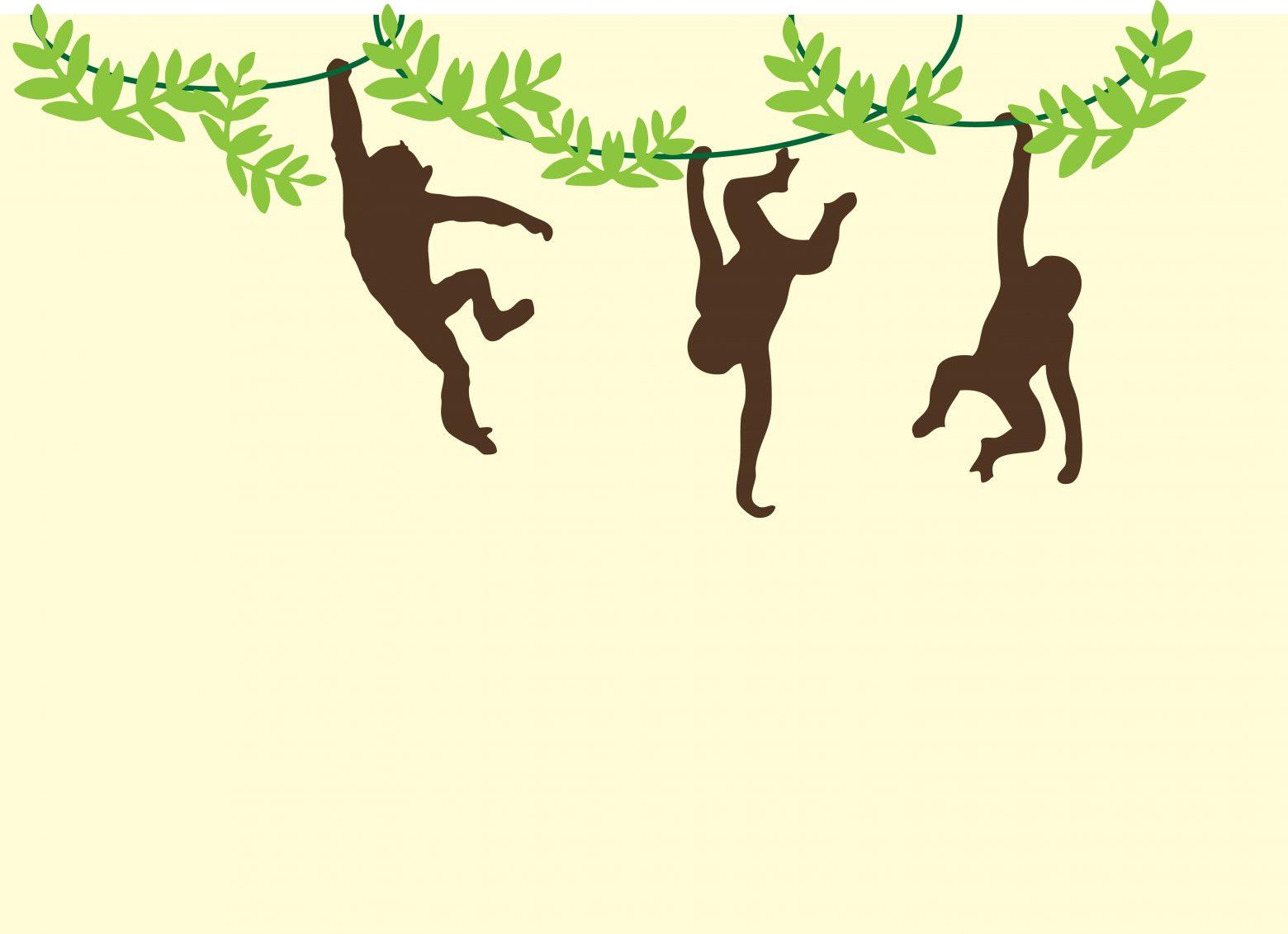 monkeys-909278