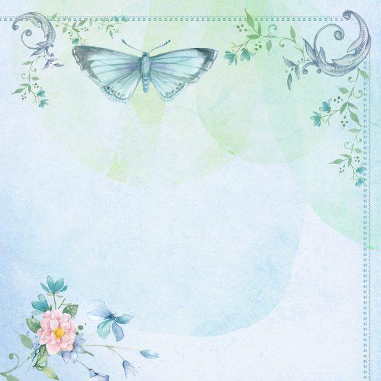 butterfly-1064162