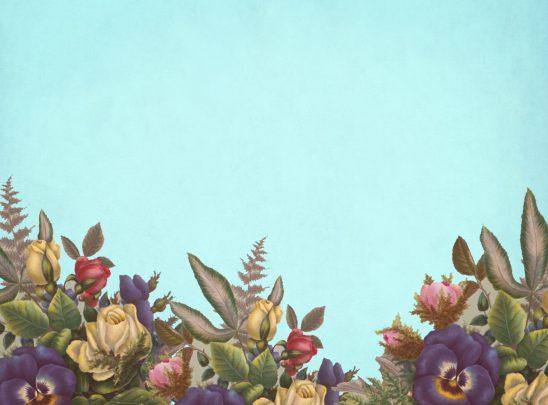 flower-3180970