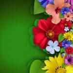flowers-111579