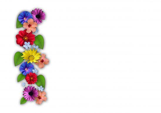 flowers-111581