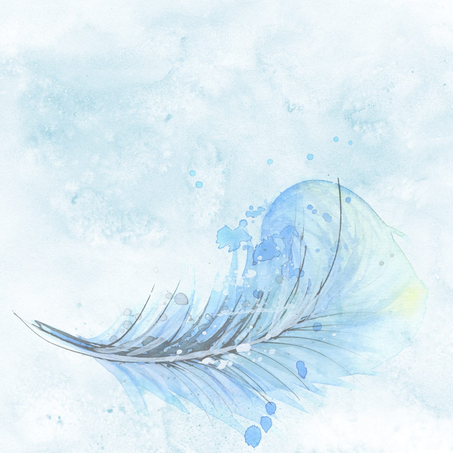 feather-1588819