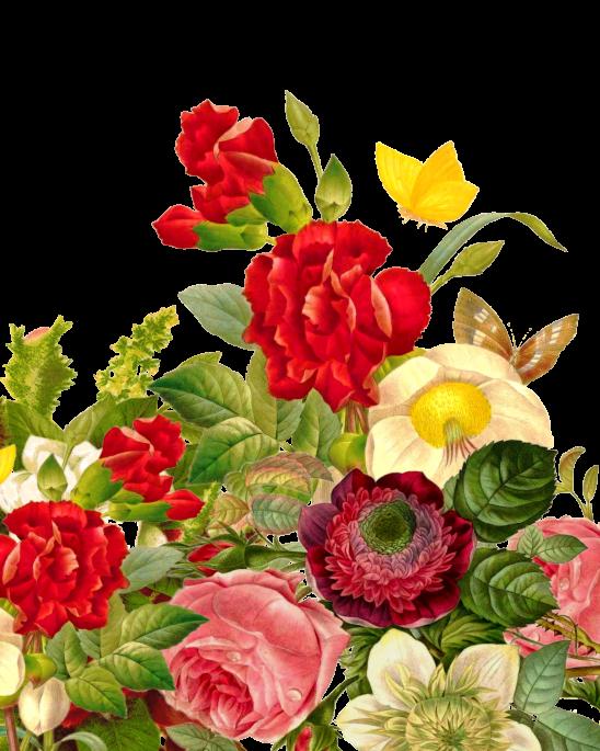 flower-bouquet-1131891