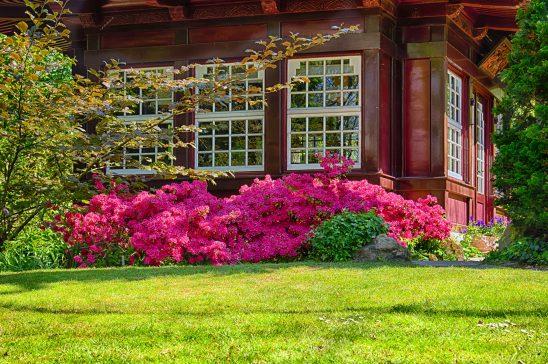 garden-2275465