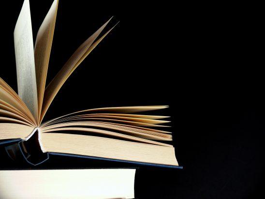 literature-3330647