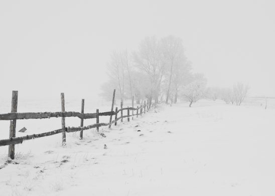 winter-20248